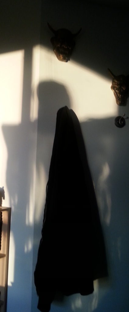 Shadowy monster or Halloween decor shadow? You decide!