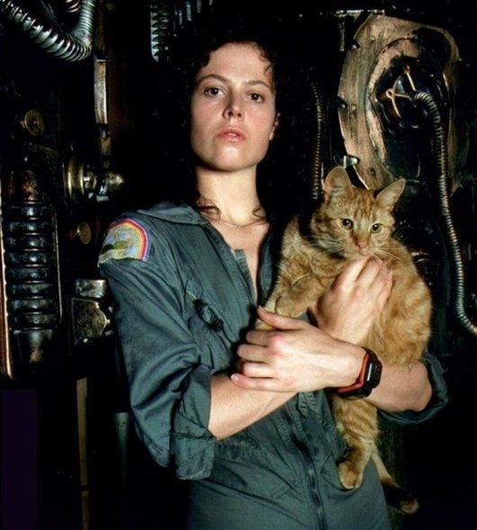 Ellen Ripley and cat